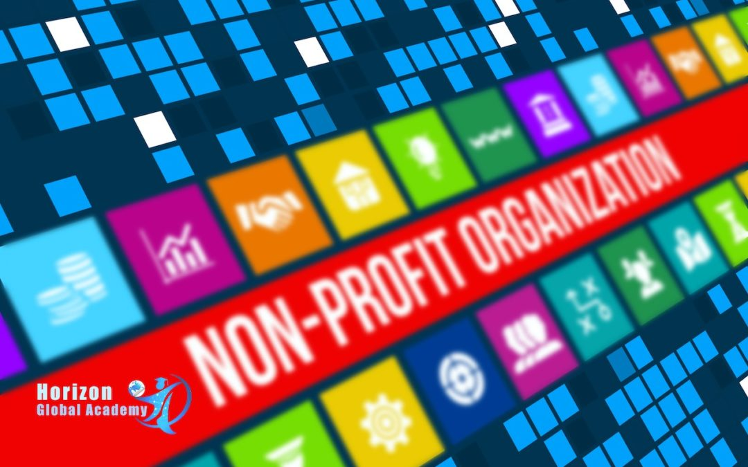 The Challenges of Nonprofit Organizations: SOFT Model